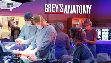 greys anatomy 13x08
