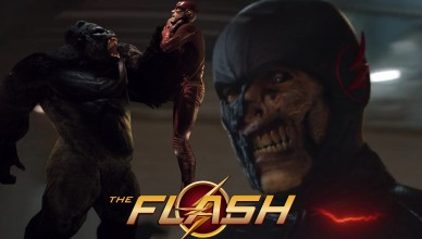 the flash gorila black flash